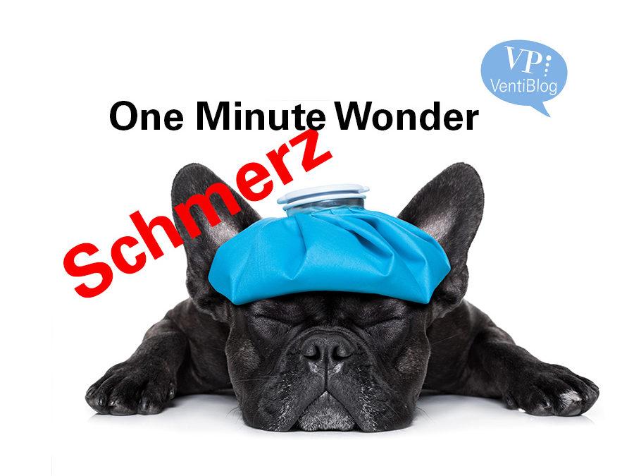 Schmerz One Minute Wonder