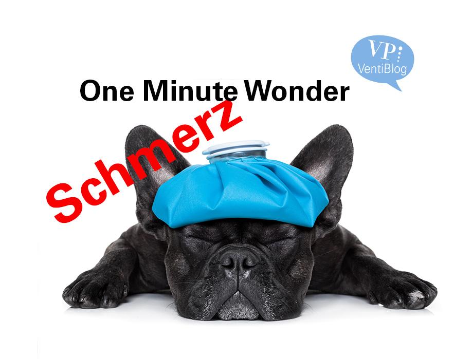 One Minute Wonder/ Schmerz